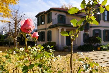 イタリア山庭園-186