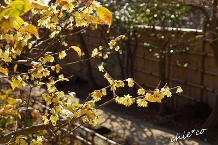 北鎌倉-197