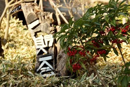 北鎌倉-211
