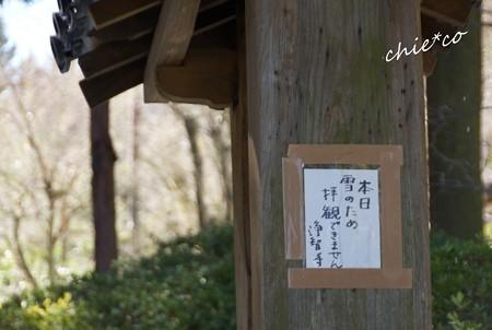 雪彩の北鎌倉-225
