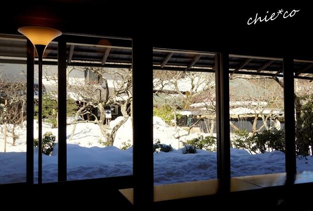 雪彩の北鎌倉-151