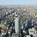 都会の空から故郷を望む
