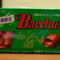Photos: Bacchus<バッカス>