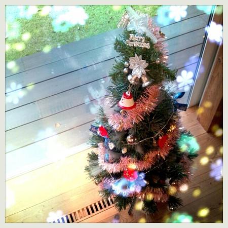 クリスマスツリー出しました☆