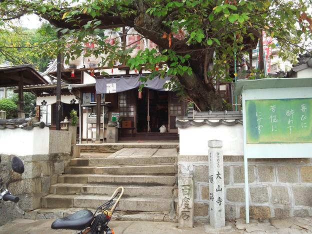 Photos: 今日は大山寺にお参りに行きましょう♪(7)