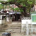 今日は大山寺にお参りに行きましょう♪(7)