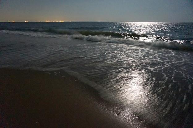 今夜は中秋の名月。近所の砂...
