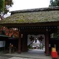 Photos: 深大寺山門2