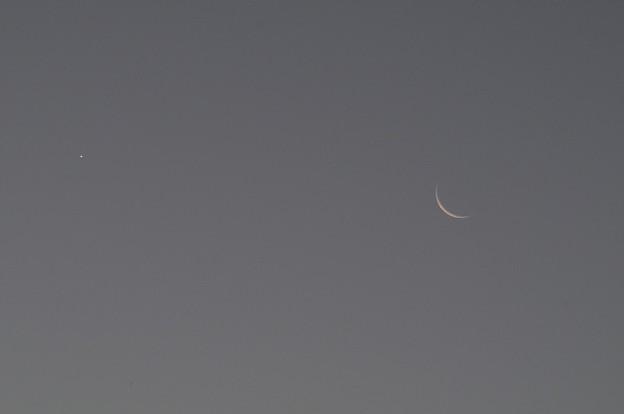 早朝の月と金星2
