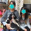 Photos: オレオに家族が出来ました
