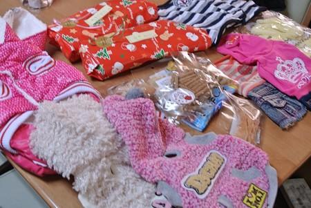 小型犬用服と無添加オヤツと私、たまごちゃんへのクリスマスプレゼント