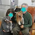 Photos: 天心改め浮雲(ふぅ)に家族が出来ました