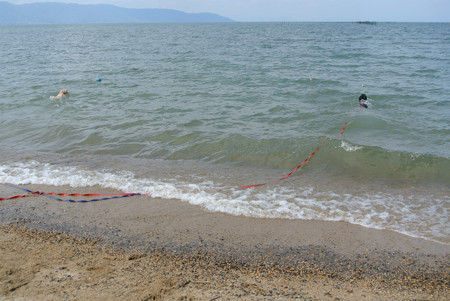 4月の琵琶湖だ~