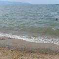 Photos: 4月の琵琶湖だ~