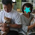 Photos: 姫子に家族が出来ました!