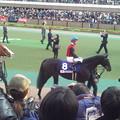 Photos: IMG_20121125_152325