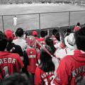 Photos: 神宮球場の赤ヘル軍団