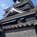 写真: 熊本城だ!ド━(゚Д゚)━ン!!