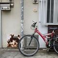 自転車のある風景 #56