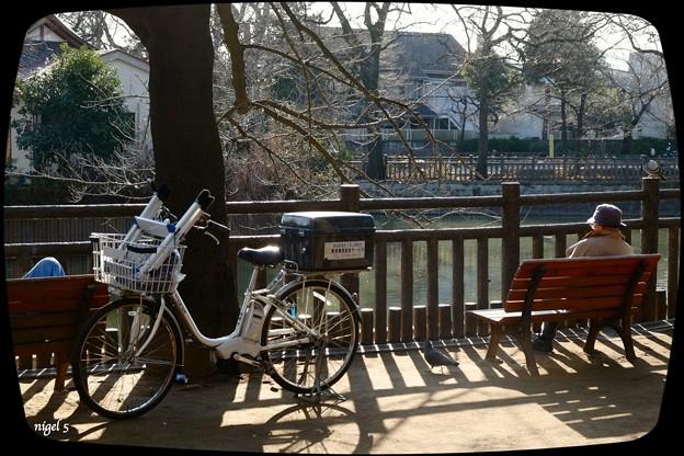 Photos: 自転車のある風景 #71