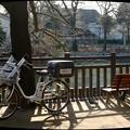 自転車のある風景 #71