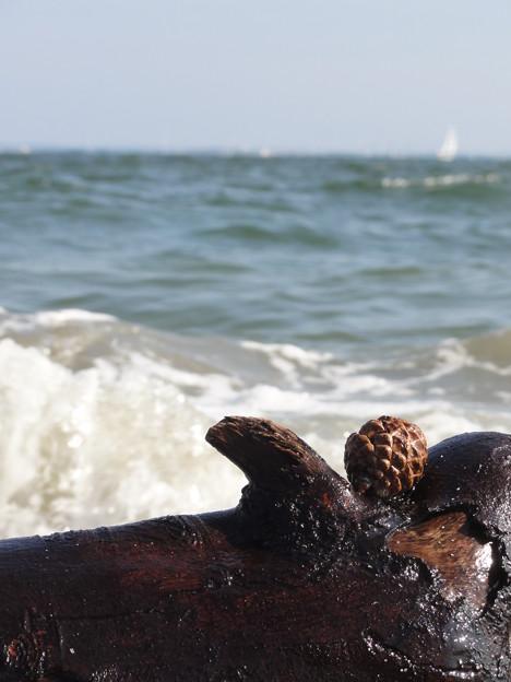 未来は海を渡って