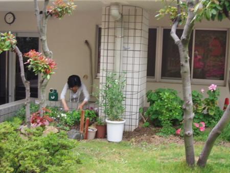 2013年5月11日 Yさん自由花壇