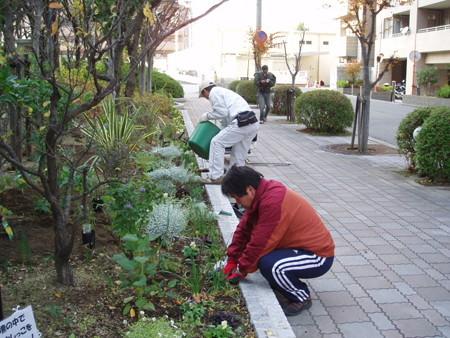 2013年12月1日(日)ガーデニング活動