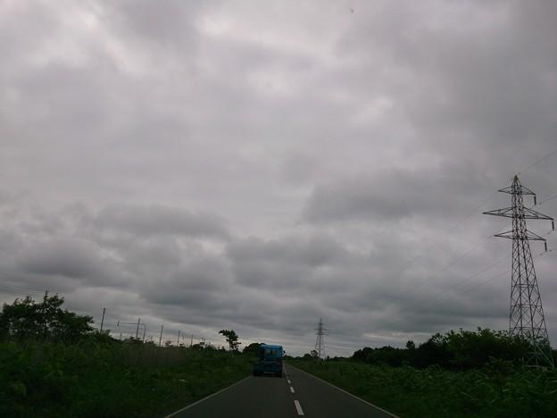 Photos: 6月20日(木)