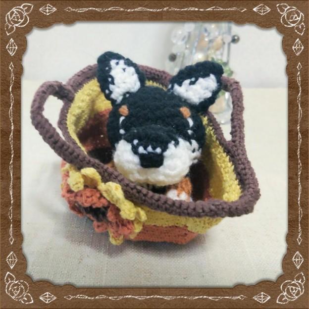 ミニミニバッグ&編みぐるみ 黒柴