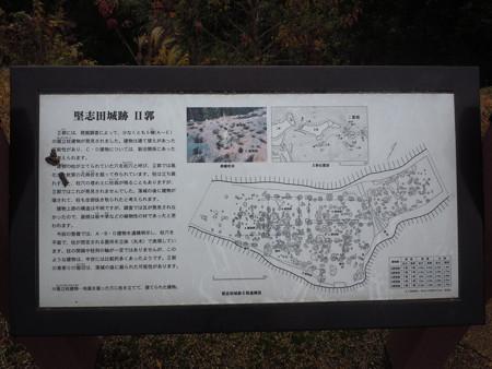 堅志田 306