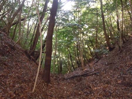 筒ヶ岳 056