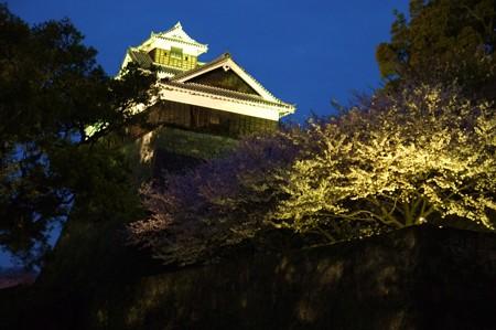 飯田丸五階櫓(竹ノ丸から)