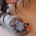 Photos: 少年の夢