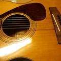写真: あぁ、懐かしい、ヤマハのピックガード。エエ音でよう鳴るし弾きやすい。これはお買い得やったかも…(^.^)1