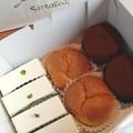 Photos: 手土産の、シロタエのケーキ