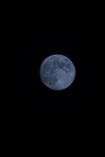Photos: 明日は満月!120929