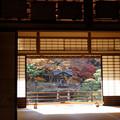 Photos: 額縁越しの紅葉風景!2012