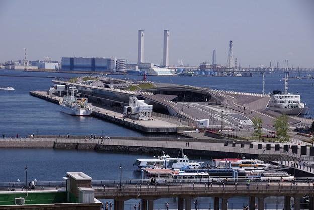 Photos: 大桟橋を見下ろす!
