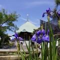 写真: アヤメ咲く夷堂!130512