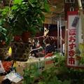 Photos: ほおずき市4、浅草!130710