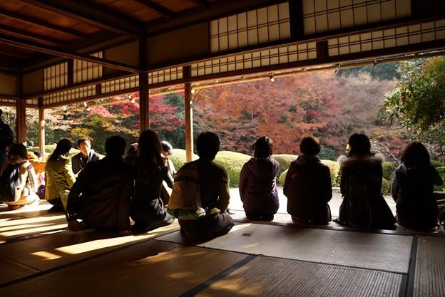 Photos: 詩仙堂晩秋の額縁!131201