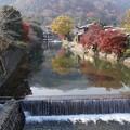 写真: 嵐山の紅葉!131202
