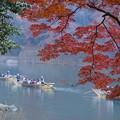 写真: 紅葉と保津川下り!131202