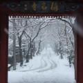 称名寺赤門からの雪景色!140208