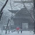 大雪と称名寺仁王門!140208