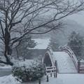 写真: 大雪と称名寺庭園!140208