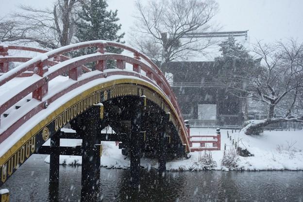 大雪の称名寺仁王門2!140208
