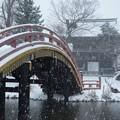 写真: 大雪の称名寺仁王門2!140208