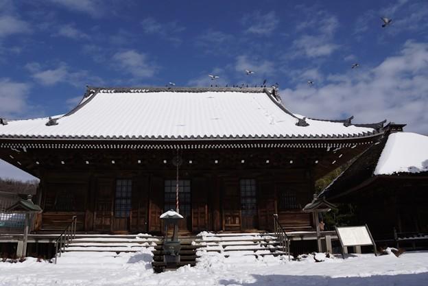 写真: 雪景色の称名寺本堂!140209